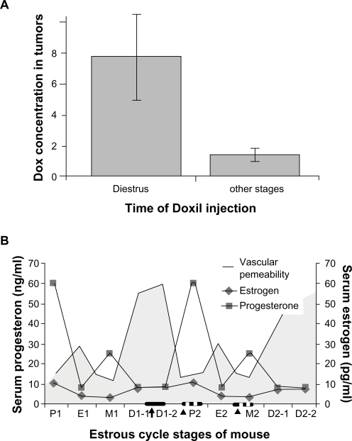 The time of Doxil administration during mouse estrous cycle and its effects on drug retention in 4T1 tumors. A) The Dox concentrations in 4T1 tumors when Doxil is injected during diestrus stage or other estrous stages. B) The dynamic changes of serum progesterone and estrogen levels during the estrous cycle. The concentrations of P4 and E2 in mice were previously published.13 The best time for Doxil injection is indicated by the black arrow and bar. The worst times for Doxil injection are indicated by small triangles and dotted bars.