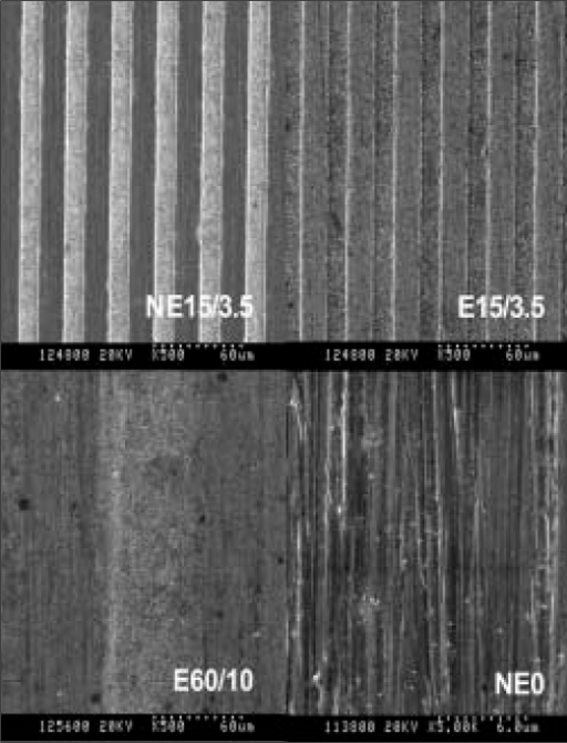 Scanning electron microscopic (SEM) images of NE15/3.5 (× 500), E15/3.5 (× 500), E60/10 (× 500) and NE0 (× 5000).