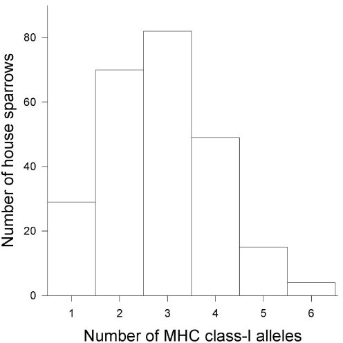 Frequency distribution of the number of MHC class I alleles in the 249 house sparrows captured from an Austrian population and used in the experiment.