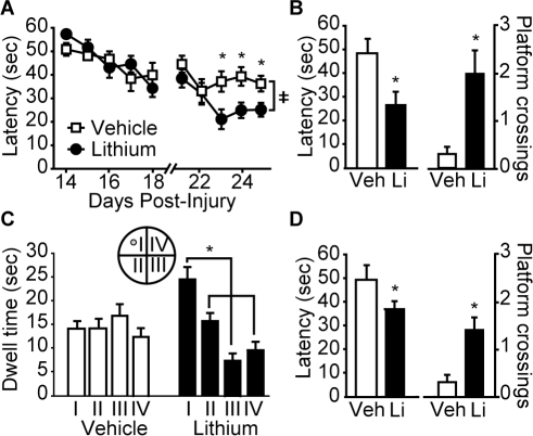 Post-injury administration of lithium chloride improves