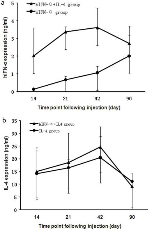 The expression of transgenes following subretinal injection. In the AAV2.IFN-α injected eyes, the level of IFN-α increases from 14 days (the first time point tested) to three months after injection. For the eyes receiving AAV2.IFN-α combined with AAV2.IL-4 injection, IFN-α level reaches a peak on day 42 and remains at a moderate level until three months after injection (a). IL-4 expression is similar in eyes receiving an injection of AAV2.IL-4 alone as compared to eyes receiving AAV2.IL-4 combined with AAV2.IFN-α (b). Results are expressed as the mean±standard deviation.