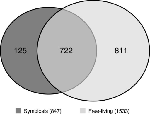 Venn diagram of proteins identified in M. loti.  A total of 1,658 proteins were identified. Although 722 proteins were commonly identified under the free-living and symbiotic conditions, 811 and 125 proteins were uniquely identified under the free-living and symbiotic conditions, respectively.