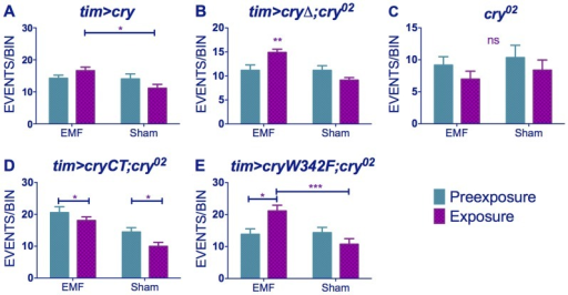 EMF-induced hyperactivity in cry variants.(A) tim>cry (B) tim>cryΔ;cry02 (C) cry02 (D) tim>cryCT;cry02 (E) tim>cryW342 F;cry02 N's are the same as in Figure 3. Mean ± sem. (see Table S2, post-hoc *p<0.05, **p<0.01, ***p<0.001).