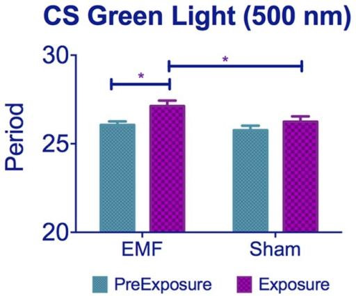 Exposure to 500 nm green light lengthens circadian period under EMF.CS flies kept under 500 nm show period lengthening when exposed to EMF compared to sham flies. See Table S1, post-hoc *p<0.05, ***p<0.001). Mean ± sem.