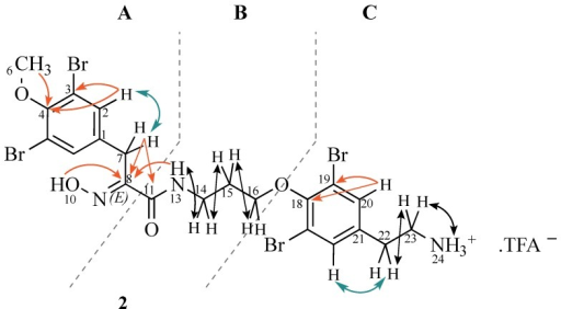 Structure and selected 2D-NMR correlations of new bromotyrosine compound (2). (Colours: red (HMBC), green (ROESY), black (COSY)).