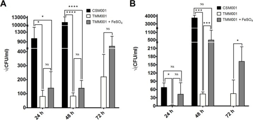 Colonization of target organs by TMM001 is partially rescued by iron supplementation.Bacterial burden in the lungs (A) and spleen (B) of mice infected with CSM001 and TMM001 grown ± 200 μM FeSO4 at 24, 48 and 72 h post infection. Bars plotted with their SD represent the mean of three independent experiments. Significant differences in colonization at 24 and 48 h were individually ascertained via one-way ANOVA followed by Tukey's multiple comparisons test. Significant difference in colonization at 72 h was extrapolated by using an unpaired t test with equal SD. ★ p ≤ 0.05, ★★★p ≤ 0.001, ★★★★p ≤ 0.0001, ns = no significance.