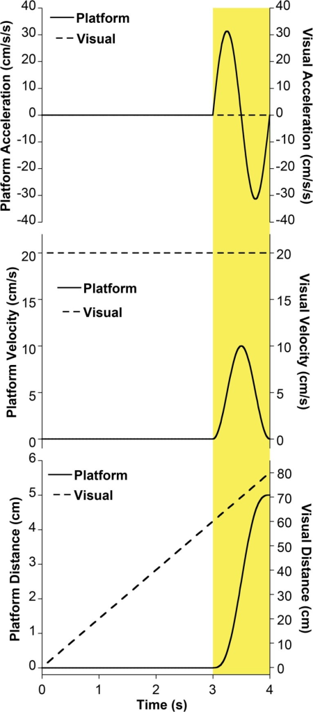 Motion profile corresponding to a trial in which there was 4s of visual motion.Platform motion (solid line) occurred during the final second of the stimulus (shaded yellow). Visual motion (dashed line) occurred at a constant velocity during the stimulus presentation. A relatively large platform motion stimulus (5 cm) as would typically be delivered at the beginning of a trial block is shown in this example.
