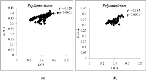 Role for mutational pressure in the evolution of papillomaviruses and polyomaviruses.Scatter plot demonstrating a good correlation between GC content at the third codon position (GC3) (X-axis) and GC content at first and second codon position (GC1,2) (Y-axis) among (a) papillomaviruses and (b) polyomaviruses. This finding suggests that mutational pressure contributes to the evolution of both papillomaviruses and polyomaviruses.