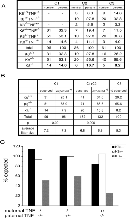 The absence of maternal TNF increases the recovery of K8−/− mice. (A) The number of mice of each genotype from the crosses C1, C2, and C3 (Fig. 2) are shown. (B) Statistical analysis using the Chi squared test is presented. The observed number of K8+/+, K8+/−, and K8−/− mice from crosses C1 and C1 + C2 are compared with the numbers expected using the percentages from cross C3 as standard. (C) Graphic representation of the recovery of K8+/+, K8+/−, and K8−/− mice compared with expected Mendelian inheritance.