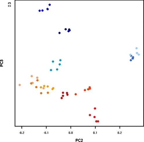 PCA of 54 gels from 11 patients. Gels are color coded according to sample (sample a: shades of blue; sample b: shades of red). Notice how replicate gels are grouped closely together. We have chosen the projection onto the second and third principal components because it shows a good separation between samples