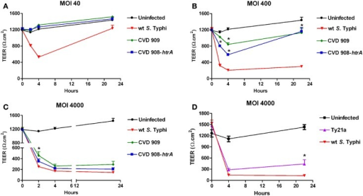 The effect of S. Typhi attenuated strain on the TEER of polarized Caco2 monolayers. Wild-type S. Typhi served as control. (A)Aro mutants-infected monolayers (MOI of 40:1); (B)Aro mutants-infected monolayers (MOI of 400:1). (C)Aro mutants-infected monolayers (MOI of 4000:1). (D) TEER in Caco2 cells infected with Ty21a applied apically at a MOI of 4000:1. Data are expressed as means ± SEM for triplicate samples for all conditions tested. These results are representative of three experiments with similar results. Statistical comparisons over wild-type S. Typhi at the same time point; *p < 0.05 (ANOVA).