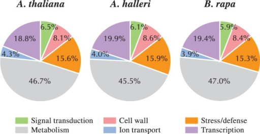 Classification of papilla-expressed genes by gene ontology, in A. thaliana, A. halleri and B. rapa. The pistil-expressed gene sets were sorted into six functional categories based on a functional classification of the genes, according to the gene ontology (GO) annotations (Tung et al. 2005, Allen et al. 2010): signal transduction, cell wall-related, stress/defense, metabolism, ion transport and transcription.