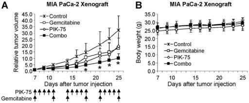 PIK-75 enhances the antitumor effect of gemcitabine in vivo. Mice (five mice per group) bearing tumors of MIA PaCa-2 were administered as indicated. (A) The tumor sizes were measured three times per week as described in Materials and methods. *P≤0.05. (B) The body weights of mice in (A) were measured three times per week.