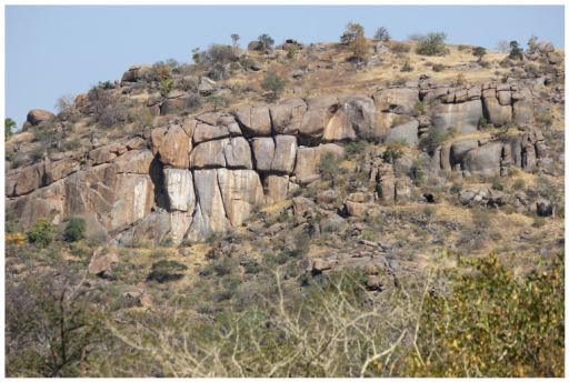 A section of Mapela Hill from the north: All the areas with dry grass (pale yellow in colour) have evidence of human activity.