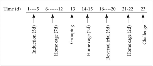 Experimental schedule. Cocaine was administered for 5 consecutive days (days 1-5), and locomotor activity was measured on days 1 and 5. The maintenance of sensitization was confirmed by a cocaine challenge on day 13, and animals were grouped according to locomotor activity. Subsequently, clozapine, haloperidol, fluoxetine, or vehicle were administered for 5 days from days 16 to 20. The final cocaine challenge was performed on day 23.