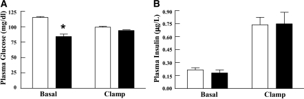 Determination of plasma glucose and insulin levels during euglycemic–hyperinsulinemic clamps. A: Plasma glucose and (B) plasma insulin level during basal and last 30 min of the euglycemic–hyperinsulinemic clamps (4 mU/kg/min insulin infusion with glucose level maintained at ∼90 mg/dl) for the WT (open boxes) and VAMP8 (filled boxes) mice. These data represent the mean ± SEM from 7–10 individual mice per group. *P < 0.05.