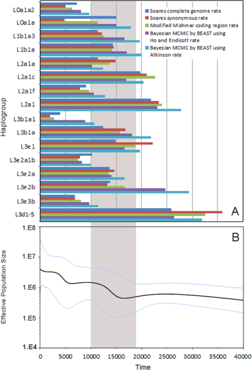 Time estimation of each observed expansion in 3 African populations and Bayesian skyline plot for 3 African populations together.(A)Time estimation of each observed expansion in 3 African populations: ρ statistic-based method with Soares complete genome rate, Soares synonymous rate and modified Mishmar coding region rate, Bayesian MCMC method by BEAST using Ho and Endicott rate, and Atkinson rate respectively.(B) mtDNA Bayesian skyline plot showing size trend of the 3 African populations together, detailed settings refer to Methods. The grey area shows the time after LGM and before Neolithic Time.