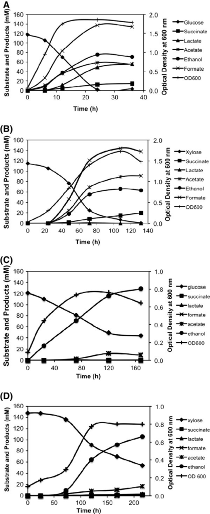 Fermentation profiles of E. coli B (A and B) and SSY09(pZSack) (C and D) grown in the bioreactor in defined medium with glucose (A and C) and xylose (B and D) as carbon source. Competing products of ethanol are produced at significant level during fermentation of both glucose and xylose in E. coli B while SSY09(pZSack) primarily produced ethanol. SSY09(pZSack) - PgapAPDH ΔldhA ΔfrdA Δack ΔpflB (pZSack).