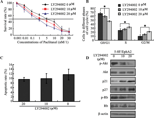 EphA2 mediated paclitaxel sensitivity in NPC 5–8 cells via modulation of the PI3K/Akt signalling pathway. (A) PI3K/Akt signalling pathway inhibitor, LY294002, reverses paclitaxel resistance caused by EphA2 over-expression. (B) Effect of LY294002 on the cell-cycle distribution in EphA2 over-expressing NPC cells pre-treated with paclitaxel. (C) Effect of LY294002 on the apoptotic rate in NPC cells over-expressing EphA2, pretreated with paclitaxel. (D) LY294002 restores the changes in expression of cyclin-dependent kinase inhibitors, p21Cip1 and p27Kip1, caused by EphA2 over-expression. *P<0.05. EphA2, ephrin type-A receptor 2; NPC, nasopharyngeal carcinoma; PI3K, phosphoinositide 3-kinase; p-Akt, phsophorylated Akt; Rb, retinoblastoma protein; p-Rb, phosphorylated Rb.