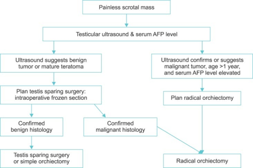 Algorithm for managing prepubertal testicular tumors. AFP, alphafetoprotein.