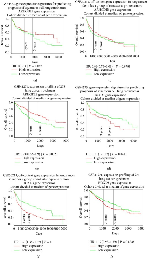 The Kaplan-Meier plots of key drivers ARHGDIB and HOXD3 on three large lung cancer datasets. The log-rank P values of ARHGDIB on GSE4573 (a), GSE30219 (b), and GSE41271 (c) were 0.042, 0.0781, and 0.0021, respectively. The patients with high expression of ARHGDIB had good prognoses. The log-rank P values of HOXD3 on GSE4573 (d), GSE30219 (e), and GSE41271 (f) were 0.0441, 0, and 0.0888, respectively. The patients with high expression of HOXD3 had poor prognoses.