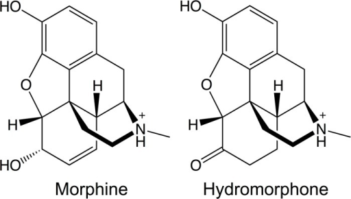 Molecular structures of morphine and hydromorphone.