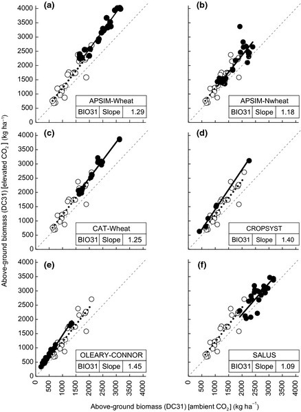 Response of biomass at stem elongation (DC31) to elevated CO2 compared to daytime ambient conditions (365 μmol mol−1) from six crop models; APSIM‐Wheat (a), APSIM‐Nwheat (b), CAT‐Wheat (c), CROPSYST (d), OLEARY‐CONNOR (e) and SALUS (f). The simulated response to elevated CO2 (● and solid fitted lines) compared to the observed response to elevated CO2 (○ and dotted fitted lines slope = 1.21). The 1 : 1 unity dashed line is the line of zero response to elevated CO2. CROPSYST does not simulate stage DC31, but simulated biomass was outputted on the observed date of DC31 for comparison.
