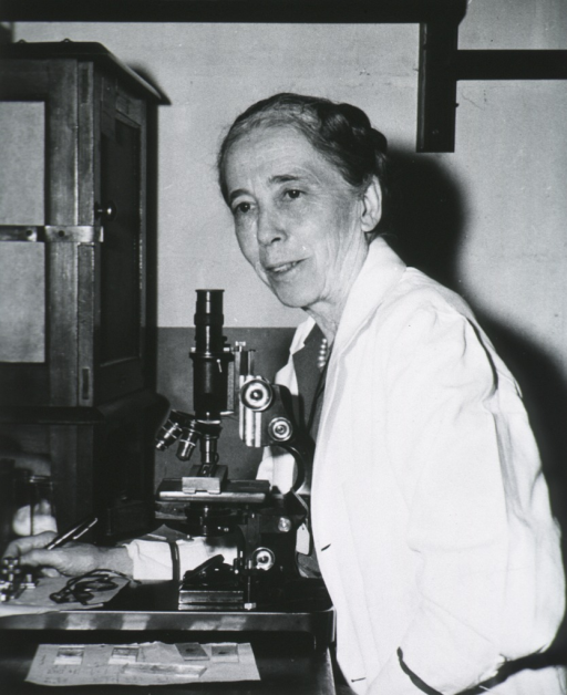 <p>Half length, full face, seated at desk in front of microscope, wearing white coat.</p>