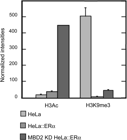 Histone H3 marks on pS2 promoter in presence or absence of MBD2 and/or ERα.HeLa cells, wild type (HeLa), expressing ectopically ERα (HeLa::ERα), and depleted in MBD2 and expressing ectopically ERα (MBD2 KD HeLa::ERα), were subjected to ChIP analysis using anti-histone H3 acetylation (H3Ac) or an anti-histone H3 lysine 9 trimethylation (H3K9me3) antibodies. The pS2 promoter was amplified by real-time PCR from an equal amount (0,5 ng) of total DNA immunoprecipitated by the different antibodies. Relative amounts of H3Ac or H3K9me3 marks were measured by comparing fractions immunoprecipitated by the anti-H3Ac or anti-H3K9me3 antibodies to fractions immunoprecipitated by the anti-histone H3 pan antibody. Each bar represents the mean ± standard deviation.
