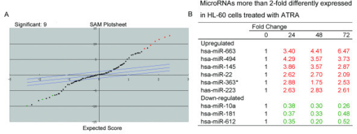 MicroRNA expression in HL-60 cells during ATRA-induced differentiation. The microRNA profile in HL-60 cells treated with ATRA or 0.1% alcohol was determined using a microRNA microarray as described in the materials and methods (A) significance analysis of microarrays of differentially regulated microRNAs in ATRA treated cells. (B) List of differentially expressed microRNA and their fold expression changes.