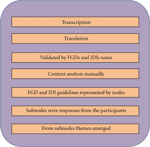 Analytical process of FGDs and IDIs.