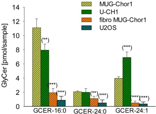 Lipid analyses.The GlyCer level (16:0; 24:0; 24:1) of chordoma cell lines (MUG-Chor1 and U-CH1) significantly increased compared to healthy human fibroblasts (fibro MUG-Chor1) and U2OS. The y-axis represents the amount of GlyCer (pg/mol). The x-axis represents the GlyCer with three different fatty acids attached to the amino group of sphingosine, namely palmitic acid (16: 0), lignoceric acid (24: 0), and nervonic acid (24: 1).