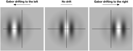 The effect of motion-induced illusory displacement on perceived global position. The crosshair indicates the true global position of the Gabor patch. When the patch drifts locally to the left (left panel), the global position of the patch is also shifted to the left. When the patch drifts locally to the right (right panel), the global position of the patch is shifted to the right. In the absence of local drift (center panel) perception of the global position is veridical.