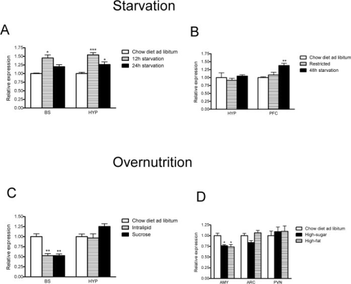 Gpr178 mRNA expression during food intake experiments.(A) Gpr178 mRNA expression after short-term exposure to starvation in mice; control group, had unlimited access to chow diet; n = 8 each group. (B) Gpr178 mRNA expression after long-term exposure (48 hours) in rat. Control group had unlimited access to chow diet, whereas restricted group was provided with 45% of the total daily caloric intake of the control group. Restricted group had free access to food until 48h before the end point of the experiment. N = 8 each group. (C) Gpr178 mRNA expression in mice after short-term (48 hours) full access to palatable drinking solutions (4.1% Intralipid or 10% sucrose); n = 8 each group. (D) Gpr178 mRNA expression in mice after long-term (10days) exposure to high-fat or high-carbohydrate diet; n = 8. BS, Brainstem; HYP, Hypothalamus; PFC, Prefrontal cortex; AMY, Amygdala. Data were analysed by two-way ANOVA followed by post hoc LSD (A, 12h starvation/24h starvation; B, restricted/48h starvation; C, Intralipid/10% sucrose; D, high-sugar/high-fat or high-carbohydrate diet). * p<0.05 ** p<0.01 ***p<0.001.
