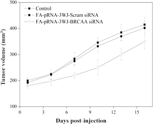 Tumor size curve as the post-treatment time increases.There existed statistical difference between FA-pRNA-3WJ-BRCAA1siRNA treated group and FA-pRNA-3WJ-Scram-siRNA treated group, P < 0.01.