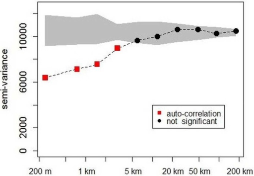 Variogram of biomass estimates from 500 m to 200 km according to distance classes.The grey shape shows the confidence interval expected for each distance class under the  hypothesis (1,000 randomizations). The red squares indicate significant auto-correlation and the black circles imply no significant correlation.