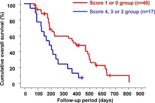 Cumulative overall survival in the poor prognostic score 4, 3 or 2 and 1 or 0 groups.In the poor prognostic score 4, 3 or 2 groups, the median overall survival was significantly shorter than that in the poor prognostic score 1 or 0 groups (194 vs. 378 days; p = 0.0010).