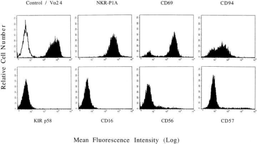 Expression of NK-associated proteins by invariant Vα24+ T  cells. FACS® profiles of a representative DN invariant Vα24+ T cell clone  (DN2.C9) 4 wk after PHA stimulation. T cells were stained with mAbs  against the antigens shown or isotype-matched control mAb at 10 μg/ml  and with anti-IgG FITC conjugate for 30 min each before FACS® analysis with propidium iodide gating on viable cells. (Top, left to right) P3 isotype control (open histogram) and Vα24 (solid histogram), NKR-P1A,  CD69, CD94. (Bottom, left to right) p58 KIR (GL183 shown), CD16,  CD56, CD57.