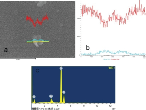 Line scanning of EDS image of the particle on the Ti-nAg surface.Notes: The green line stands for Ag and the red line stands for titanium.Abbreviations: EDS, energy-dispersive spectroscopy; Ti-nAg, silver nanoparticle-modified titanium.