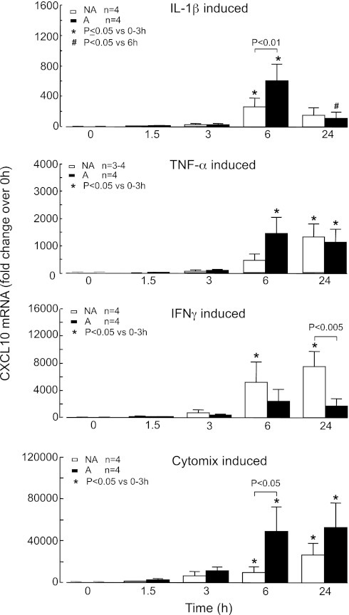 Cytokine-induced CXCL10 mRNA production by asthmatic (A) and nonasthmatic (NA) airway smooth muscle (ASM) cells. Confluent, serum-deprived ASM cells were stimulated with 10 ng/ml of IL-1β, TNF-α, IFN-γ, or cytomix for up to 24 h, and CXCL10 mRNA levels were quantified using real-time PCR and expressed as fold change over 0 h. Bars, mean ± SE.