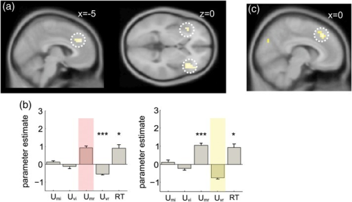 Additional imaging results (a) voxels where there was a significant negative correlation between the response to UMr and the response to UVr shown on a sagittal (left panel) and axial (right panel) slice at a threshold of P < 0.001 uncorrected. (b) Results of an analysis in which reaction time (RT) was included in the design matrix. Bar graphs show parameter estimates for response to the mean and variance of task-irrelevant (UMi and UVi) and task-relevant values (UMi and UVi) and reaction time (RT), for a dmPFC region of interest defined by its significant response to UMr (left panel) and UMv (right panel). Stars indicate significance: *P < 0.05, **P < 0.01, ***P < 0.001. Note positive correlation with RT in each region, and that all effects described persist even once RT is included. (c) Voxels showing a negative correlation with D, indexing the absolute distance to bound of all of the elements in the array, rendered on a sagittal slice at a threshold of P < 0.001 uncorrected.