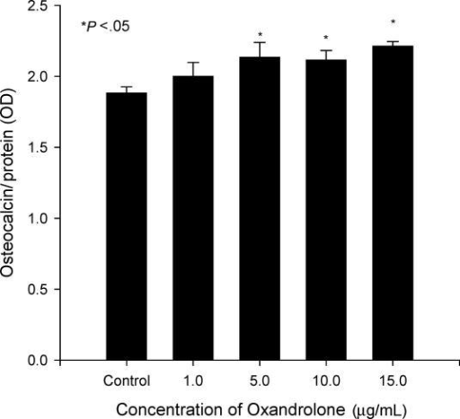 Increased osteocalcin levels after oxandrolone treatment. Human osteoblastic cultures were exposed to oxandrolone (0, 1, 5, 10, and 15 μg/mL) for 24 hours. Data are expressed as mean ± SEM of 6 determinations.