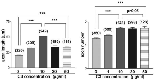 Distinct C3 dose effectiveness on axon elongation and axon number in cultured cerebellar granule neurons. Axon elongation reveals a bell-shaped C3 responsiveness consistent with the presence of two opposing effects downstream of Rho. However, the C3 effect on axon number is saturated at doses over 10 μg/ml. n ≈115–424; ***P < 0.001.