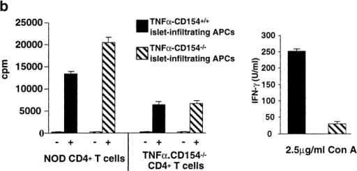 TNF-α–CD154−/− mice cannot mount GAD-specific CD4+ T cell responses. (a) CD4+ T cells were purified from the pancreatic lymph nodes of 6-wk-old TNF-α–CD154+/+ (♦), TNF-α–CD154−/− (○), or non-tg NOD–CD154−/− (▴) mice and cultured with 5 × 105 irradiated splenocytes from 5-wk-old NOD mice and 0–20 μg of GADp35. After a 4-d culture, proliferative responses of triplicate cultures were determined. Background cpm for CD4+ T cells cultured with irradiated splenocytes was <500. (b) CD4+ T cells from TNF-α–CD154−/− mice show decreased responses to islet antigen. Left, irradiated islet-infiltrating cells (3 × 104) from 6-wk-old TNF-α–CD154+/+ or TNF-α–CD154−/− mice were cultured with 2 × 106 CD4+ T cells purified from 6-wk-old TNF-α–CD154−/− mice or age-matched control NOD mice. Proliferative responses of triplicate cultures were measured after 4 d as described previously. Background cpm for CD4+ T cells was <520. Right, islet-infiltrating cells from 6-wk-old TNF-α–CD154+/+ or TNF-α–CD154−/− mice were depleted of CD8+ T cells, and the remaining cells were cultured with 2.5 μg/ml of Con A for 48 h. Culture supernatants were harvested at the end of the incubation period, and IFN-γ was detected by ELISA. The ELISA assay was performed in triplicate and the data presented as mean ± SD. (c) CD4+ T cells in TNF-α–CD154−/− mice cannot be primed to exogenous protein antigens. Groups of two 6-wk-old TNF-α–CD154+/+ (♦), TNF-α–CD154−/− (▴), non-tg NOD–CD154+/+ (▪), and non-tg NOD–CD154−/− (•) mice were immunized subcutaneously via their footpads with 100 μg of KLH in alum. 7 d later, 5 × 105 cells isolated from the popliteal lymph nodes were cultured with KLH at the concentrations (conc.) shown. After a 4-d incubation, proliferative responses of duplicate cultures were measured as before. Background cpm values for cells cultured in medium alone have been subtracted from the data.