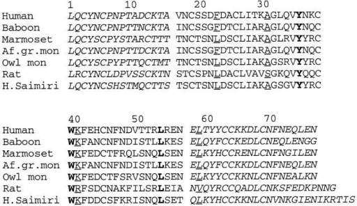 Amino acid sequence alignment of CD59 and CD59 homologues from different species. The conserved residues located in the  groove that are shown in green in Fig. 7 b are in bold, and conserved residue classes shown in blue in Fig. 7 b are underlined. Residues 16-57 are  shown in plain text. Note that not all of the conserved residues indicated  above occur on the shown surface of the molecule displayed in Fig. 7 b.  The sequences that can be replaced by Ly6E, and which are therefore not  required for function are in italics. Sequences shown are human CD59  (39) and homologues from Baboon (40), Marmoset (41) (GenBank acc.  no. L22860). African green monkey (40), Owl monkey (41) (GenBank  accession no. L22861), Rat (42), and Herpes Saimiri virus (43).