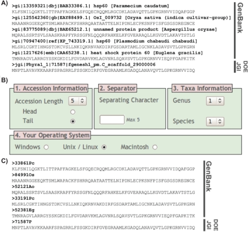 REFGEN conversion of FASTA files for use in phylogenetic programs. A) Snapshot of CPN60 alignment. Sequences are derived from GenBank and the DOE JGI Phytophthora ramorum databases (please note although the DOE JGI sequence does not confirm to the long identification line format it is accommodated by REFGEN). All CPN60 sequences are curtailed after the first 70 amino acid positions for the purpose of this figure. Note the long database identifier lines given to each sequence. B) Screenshot of REFGEN formatting options. C) Output from REFGEN, with sequence labels now compatible with all phylogenetic programs and ready for analysis.