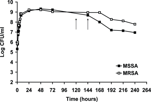 Growth curves of methicillin-sensitive and methicillin ...