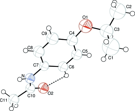 The molecular structure of the title molecule, with the atom-numbering scheme. Hydrogen bond is shown as dashed line.