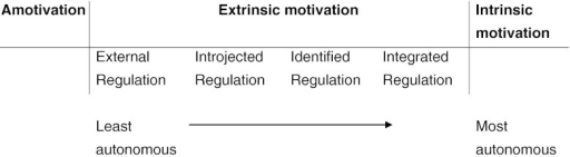 The self-determination continuum (adapted from Deci and Ryan 2000)