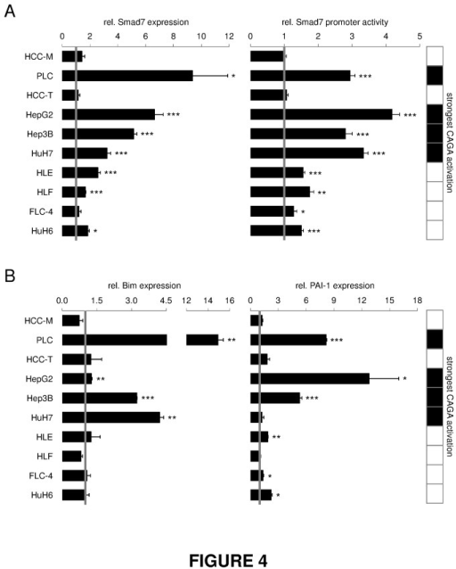 Induction of Smad7 expression by TGF-β correlates with cytostatic responsiveness.(A) Left side: Cells were treated with or without TGF-β for 2 h. Smad7 expression and 18S rRNA levels as reference gene were detected by real time PCR. Right side: For evaluation of transcriptional activity, HCC cell lines were transfected with a construct containing a luciferase gene under control of the Smad7-promotor and treated with TGF-β for 6 h. Treated samples were correlated to untreated controls. (B) Changes in expression levels of Smad3 target genes Bim and PAI-1 were detected after 2 h (PAI-1) or 24 h (Bim) using real time PCR analysis with rS18 as reference gene. The tables highlight cell lines with highest CAGA activity (black fields). Significant differences are indicated as * p < 0.05, ** p < 0.01 and *** p < 0.001 (Student's t test).